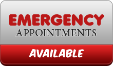 Emergency Appointments are Available